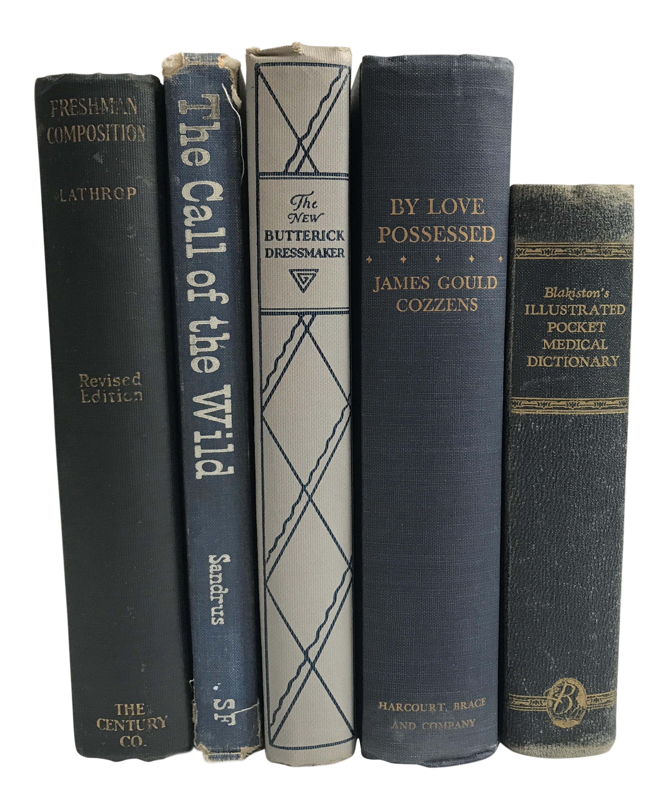 Collection of Vintage Blue Books - Set of 5 | Chairish