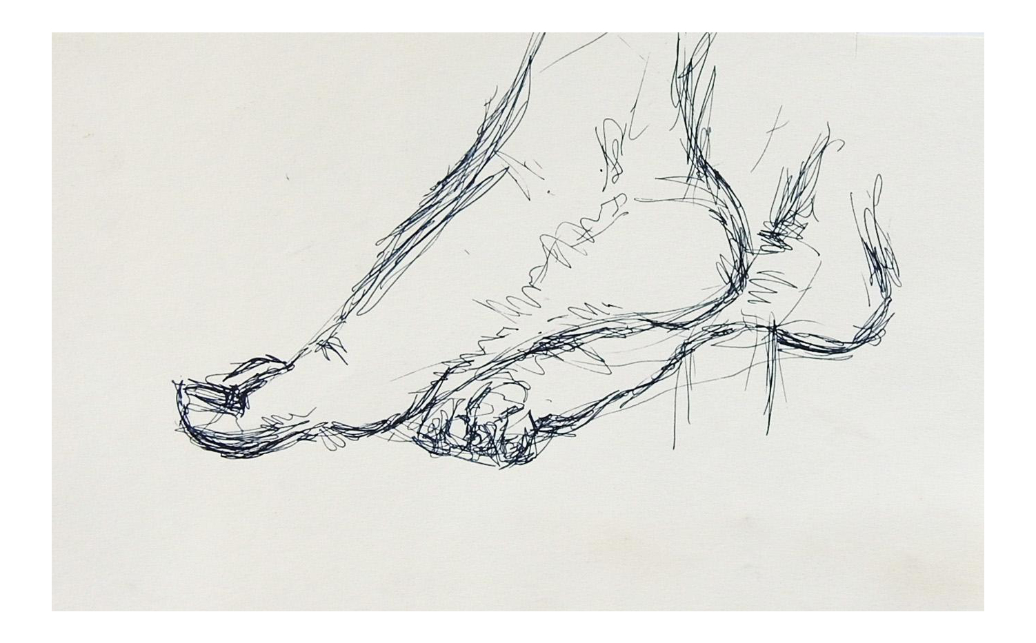 Mid 20th Century Pen Ink Foot Study Drawing Chairish