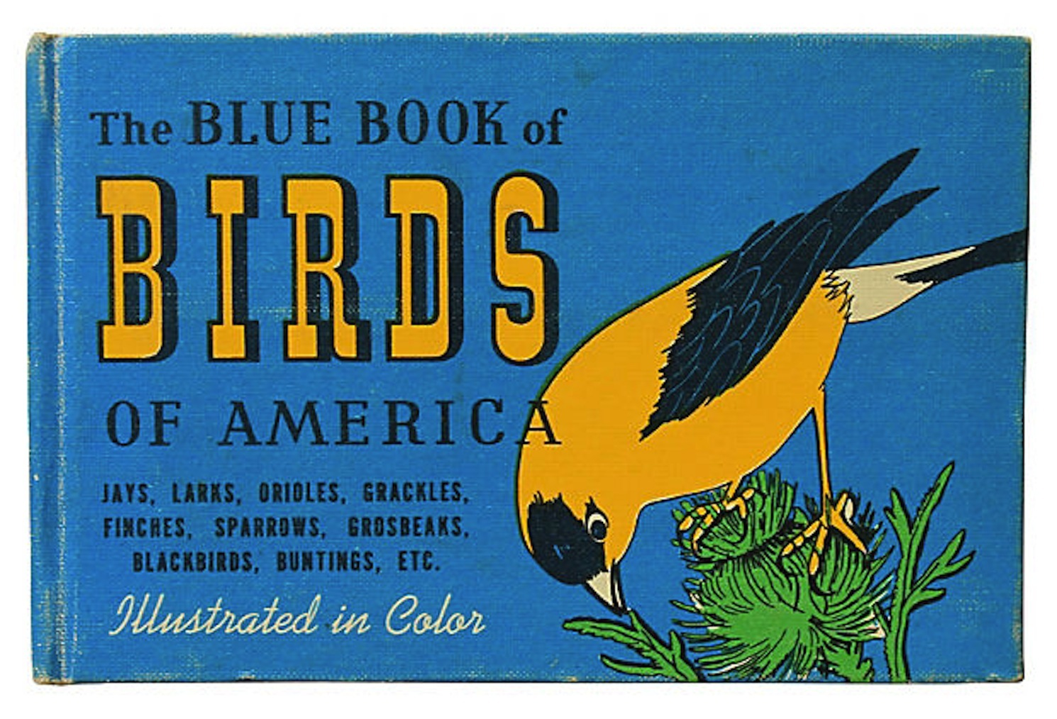 Vintage Blue Book of Birds | Chairish