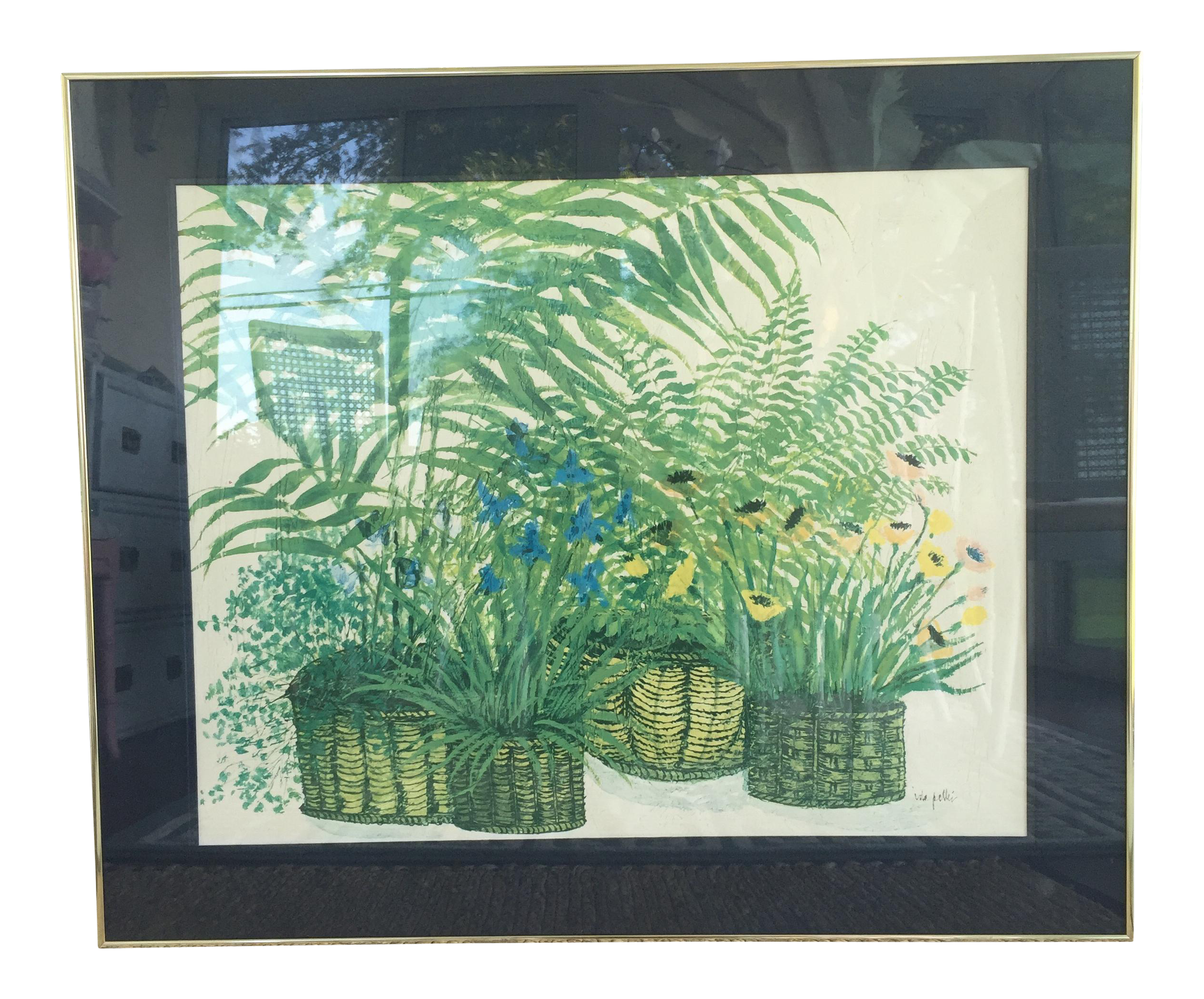 1970\'s Palm Beach Regency Artist Ida Pellei Botanical Gallery Framed ...