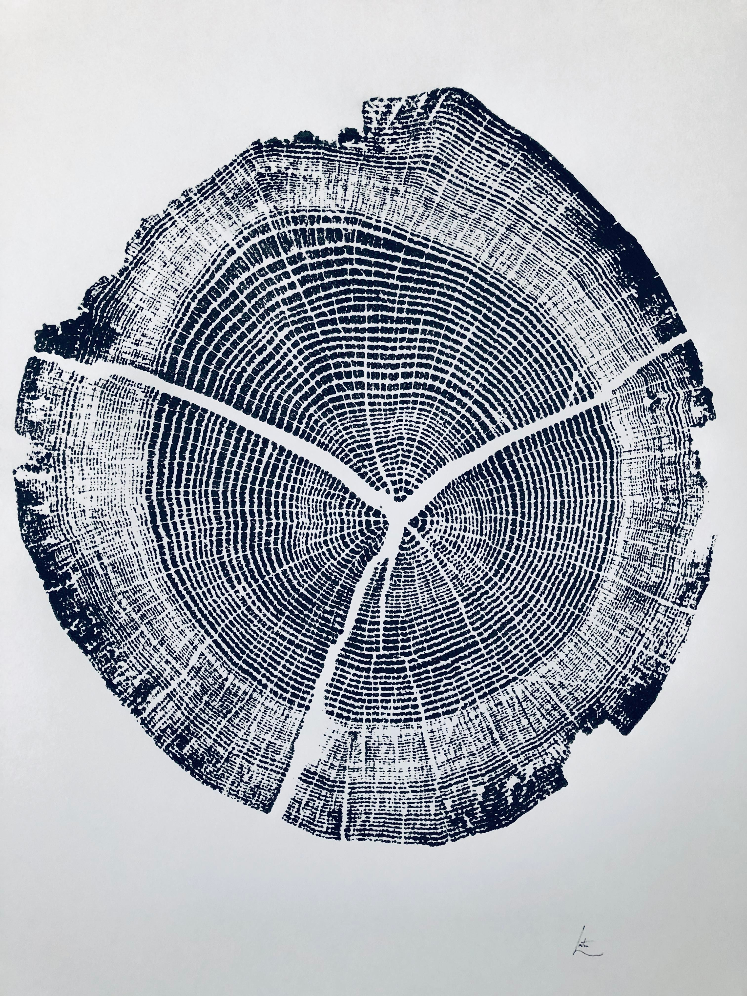 Walden Pond Tree Ring Print From Walden Pond Handmade Print By Erik Linton Chairish