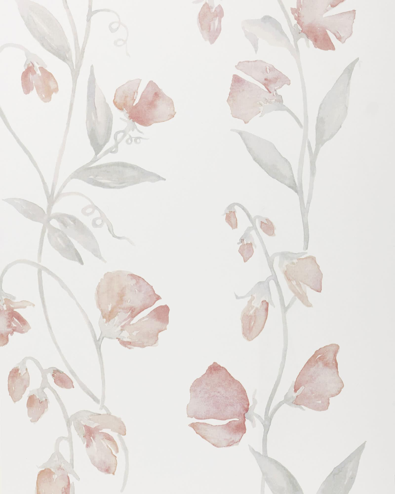 Serena Lily Sweet Pea Blush Pink White Floral Wallpaper Chairish