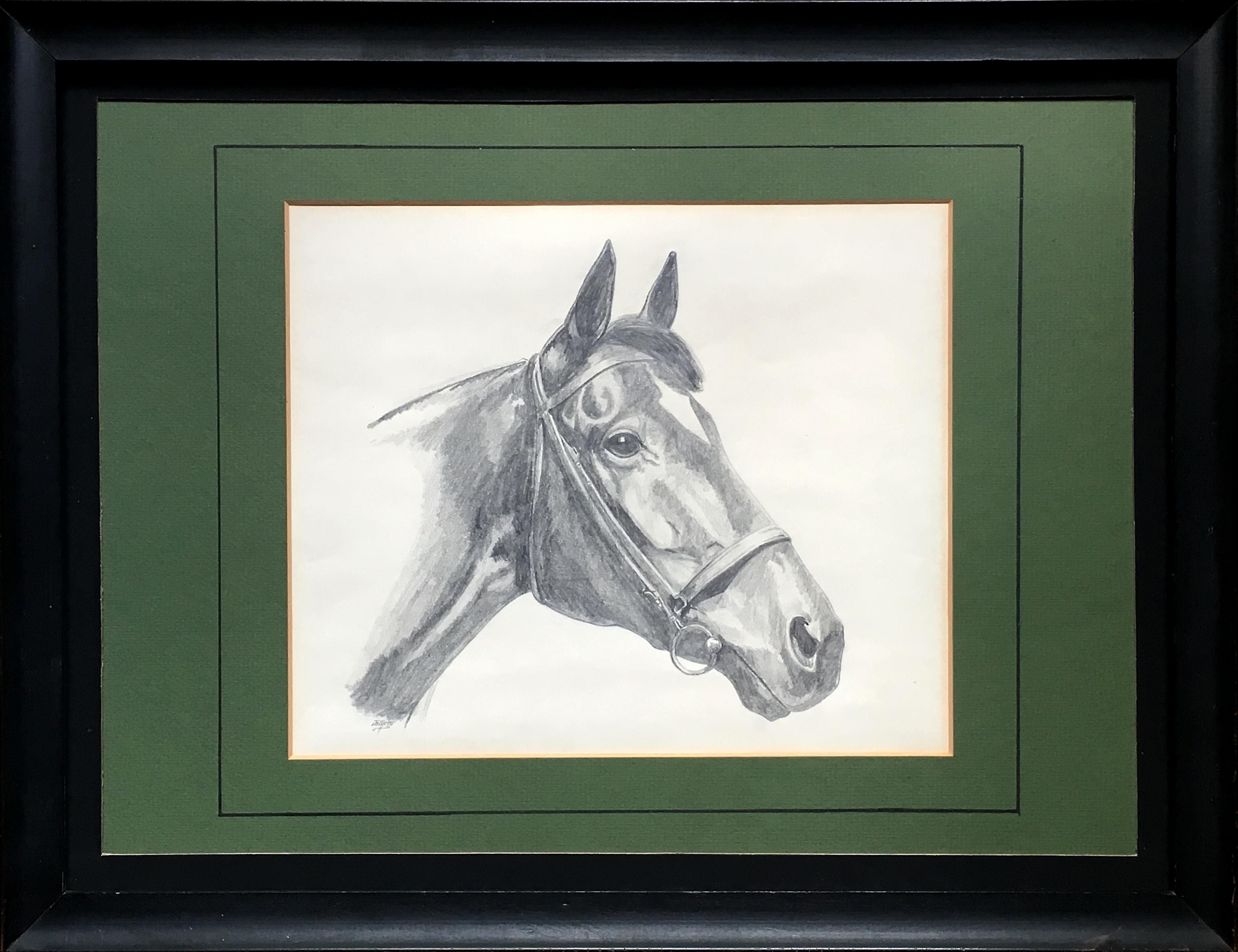 Vintage portrait of a horse original pencil drawing chairish jeuxipadfo Gallery