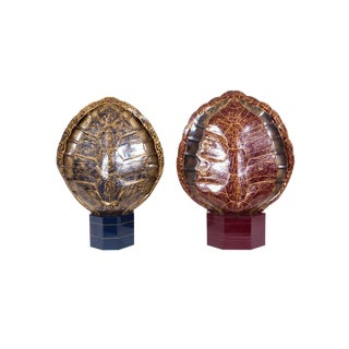 Faux Tortoise Lamps For Sale