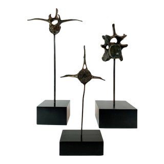 20th Century Bronze Vertebrae on Stands - Set of 3 For Sale