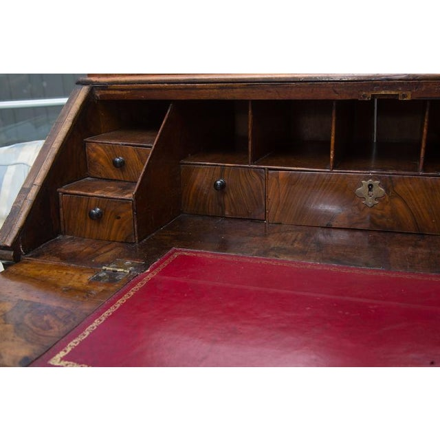Brown 18th Century English Walnut Cottage Secretary For Sale - Image 8 of 10