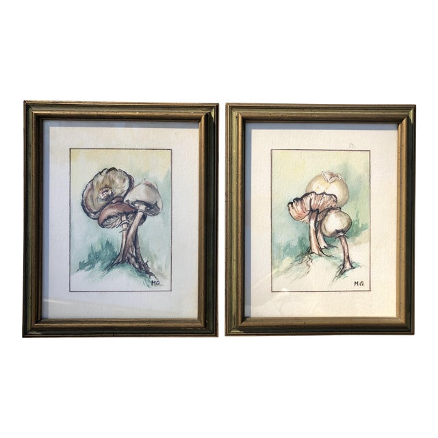 Framed Original Mushroom Watercolor Paintings - a Pair For Sale