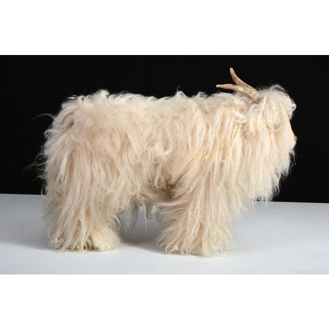 Vintage Mountain Goat / Sheep With natural horn and long hair lambswool Germany, circa 1960s Made by hand