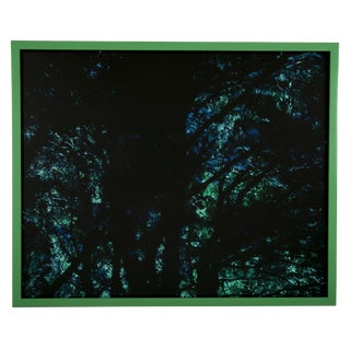 Archival Pigment Photograph by Chris Austin For Sale