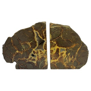 Septarian Stone Bookends For Sale