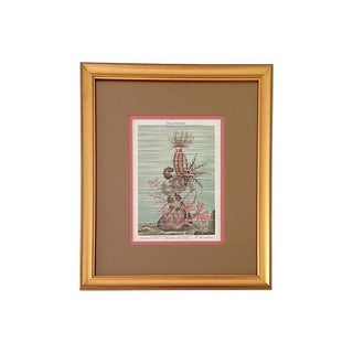 Antique Coral and Sea Cucumber, 1887 For Sale