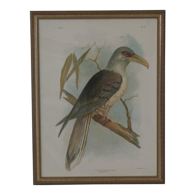 1990s Vintage Custom Framed Channel Bill Bird Print For Sale