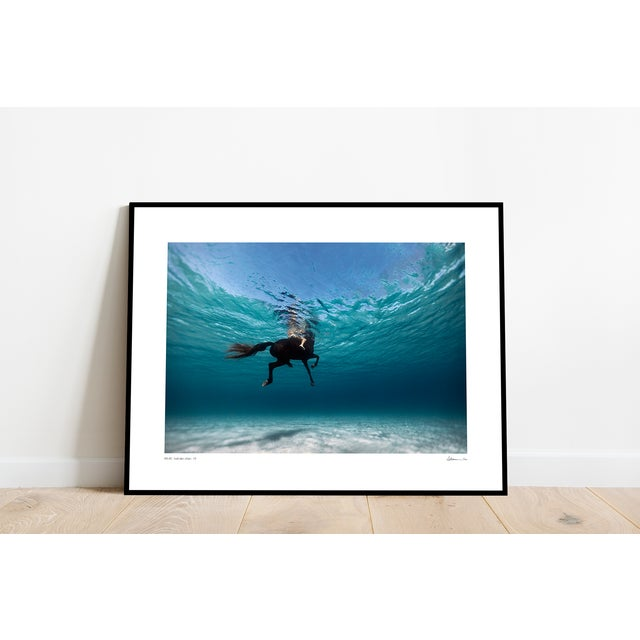 Swimming on a Horse in Menorca, Framed Print on Archival Paper by artist Enric Gener from the Island of Menorca, Spain...