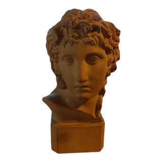 1920's Antique French Classical Inspired Terra Cotta Bust For Sale