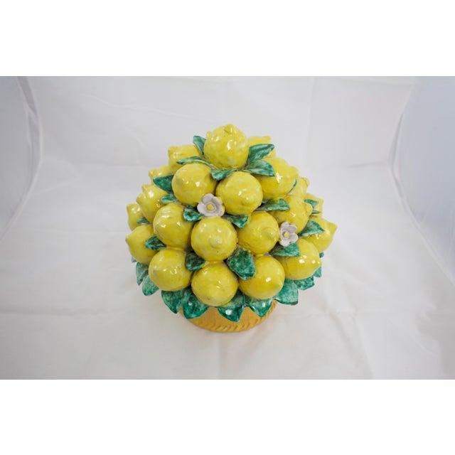 Italian Terracotta Lemon Topiary For Sale - Image 4 of 9