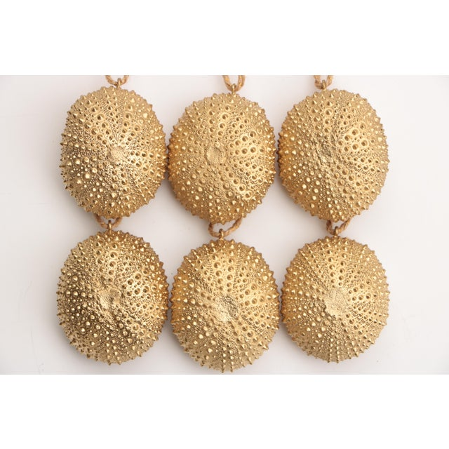 Set of six ornaments hand crafted from natural sea urchins; filled with lightweight plaster and color-enhanced. Sizes vary...
