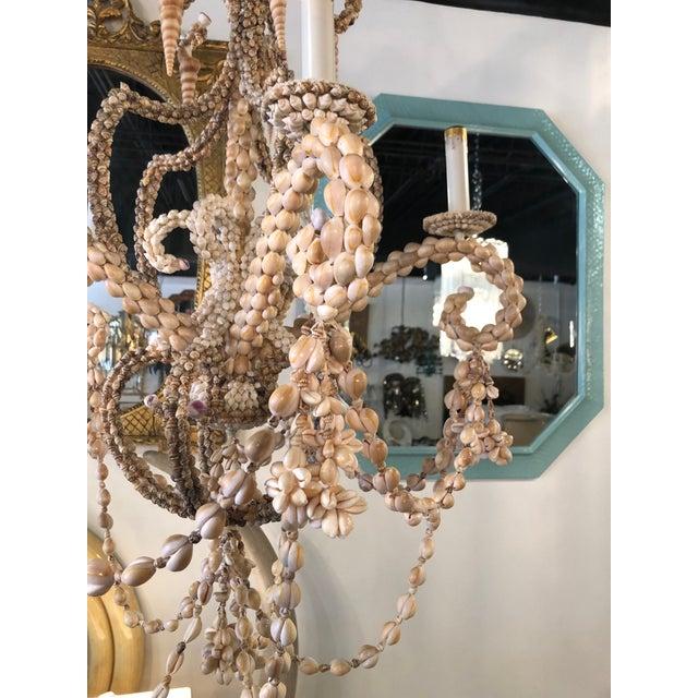 White Vintage Seashell Shell Encrusted 5 Light Chandelier For Sale - Image 8 of 10
