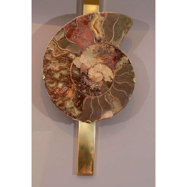 Mid-Century Modern Pair of Ammonite and Brass Wall Lights For Sale - Image 3 of 11