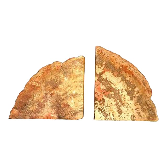 Mid 20th Century Petrified Wood Bookends - a Pair For Sale