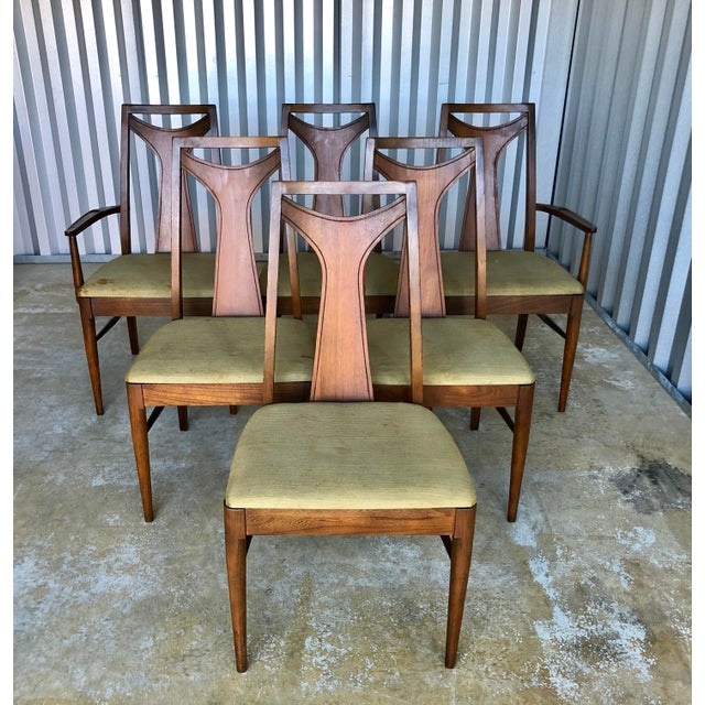 A set of 6 Dining Chairs in Walnut by Kent Coffey Furniture Co. 1960's Vintage. Chairs are solid and sturdy, upholstery...