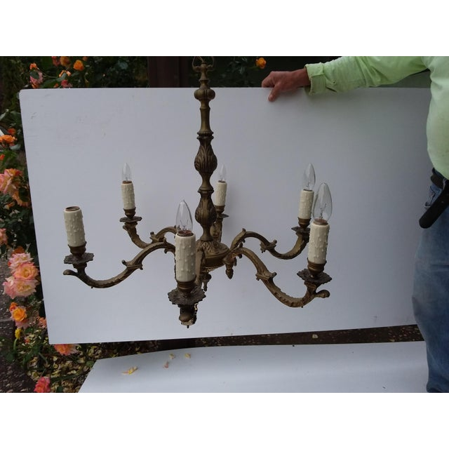 Elegant six arm chandelier with dark brass or bronze finish and matching canopy.