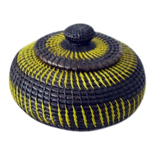 Wounaan Central American Coil Basket With Lid For Sale