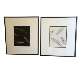 Leaf Photogram Prints - A Pair For Sale