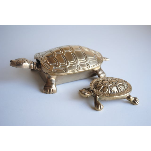 Small Brass Turtle Box - Image 5 of 5