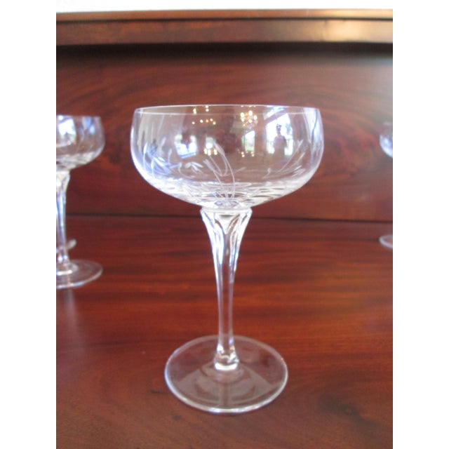 Gorham Jolie Etched Crystal Cocktail Coupes - S/8 For Sale - Image 5 of 6