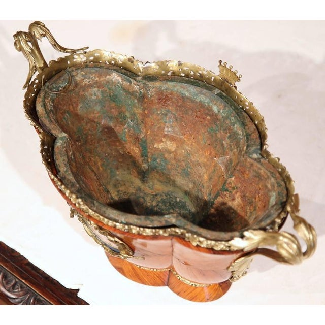 Early 19th Century French Tulipwood & Bronze Jardiniere For Sale - Image 5 of 10