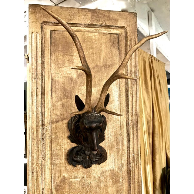 Early 20th Century Carved Black Forest Stag Head Mount With Antlers For Sale - Image 5 of 6