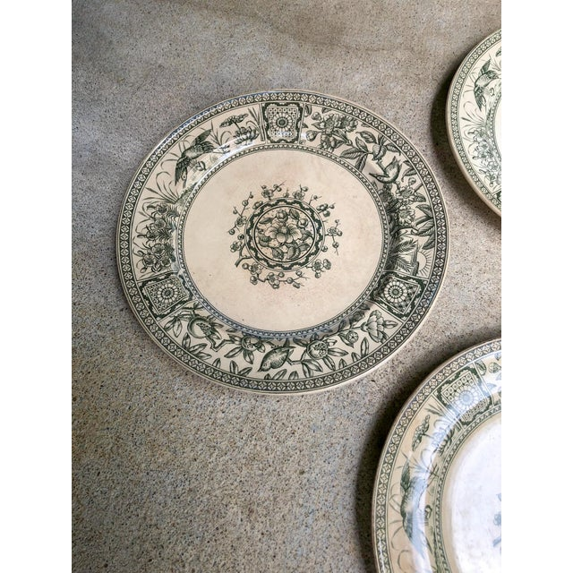 Wonderful grouping of four Victorian Aesthetic Movement ironstone plates, rare dark green transferware, in the Iolanthe...