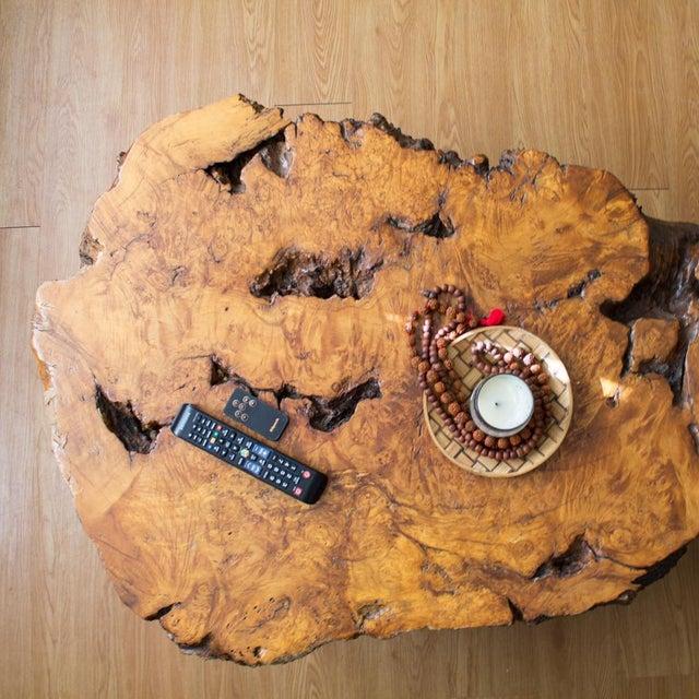 Live Edge Maple Burlwood Coffee Table For Sale - Image 5 of 11