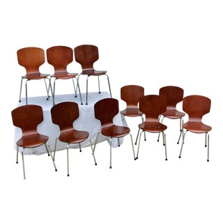 Bent Plywood Chairs- Set of 10 For Sale