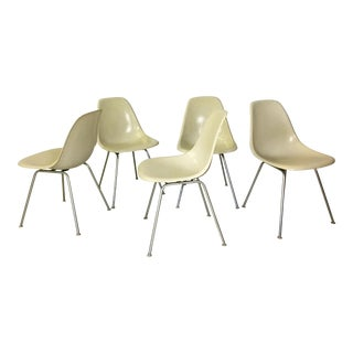 Five Fiberglass Eames Shell Chairs for Herman Miller For Sale