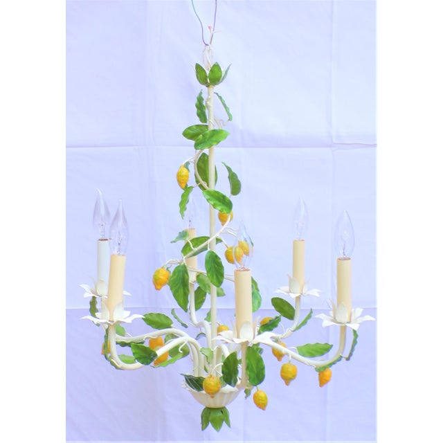 Vintage Italian Lemon Tree Chandelier For Sale In Houston - Image 6 of 13