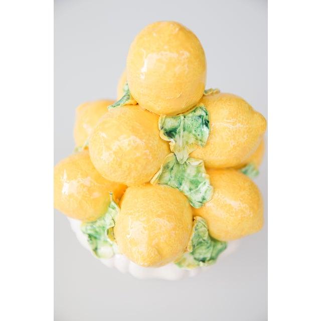 Vintage Italian Majolica Lemon Topiary For Sale - Image 4 of 7