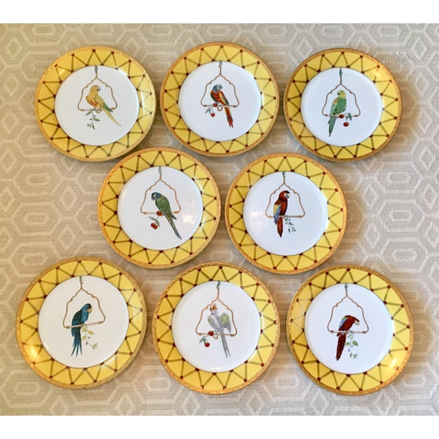 A gorgeous set of 8 Chelsea House porcelain plates. Each features a different tropical bird displayed on a perch and...