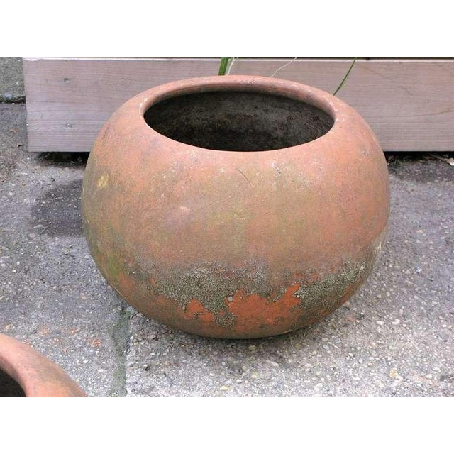 Mid-Century Mexican Terracotta Pots - Image 10 of 10