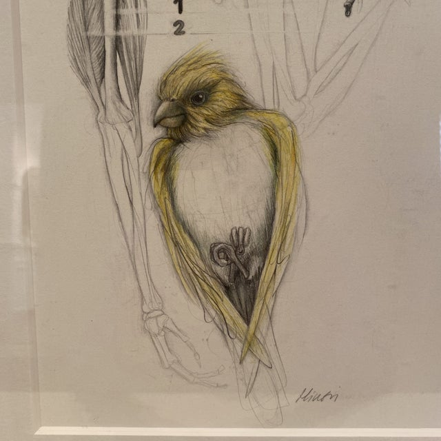 Beautiful graphite drawing by Hillevi Barr, represented by Houston's McMurtrey Gallery. Matted and framed in a black wood...