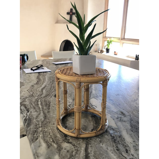 1970s Vintage Bamboo Plant Stand For Sale - Image 5 of 8