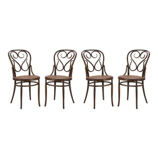 Bentwood Dining Side Chairs With Caned Seats by Salvatore Leone, Set of Four For Sale