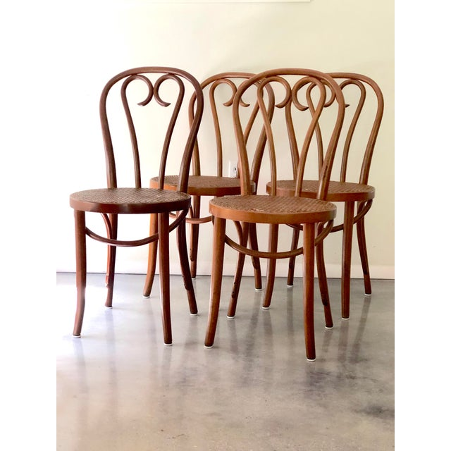 Vintage Thonet Sweetheart Bentwood Cane Bistro Cafe Chairs--Set of 4 For Sale - Image 9 of 9