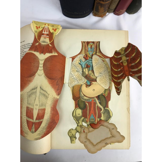 Illustration Late 19th to Early 20th Century Antique Petite Reference Library of a Surgeon - Set of 7 Books For Sale - Image 3 of 13