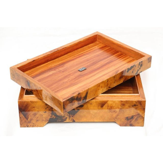 Eugenio Tavola by Oggetti Horn & Shell Box Over Wood For Sale - Image 9 of 9