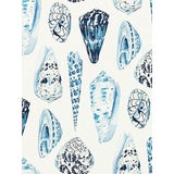 Image of Scalamandre Coquina, Porcelain Fabric For Sale