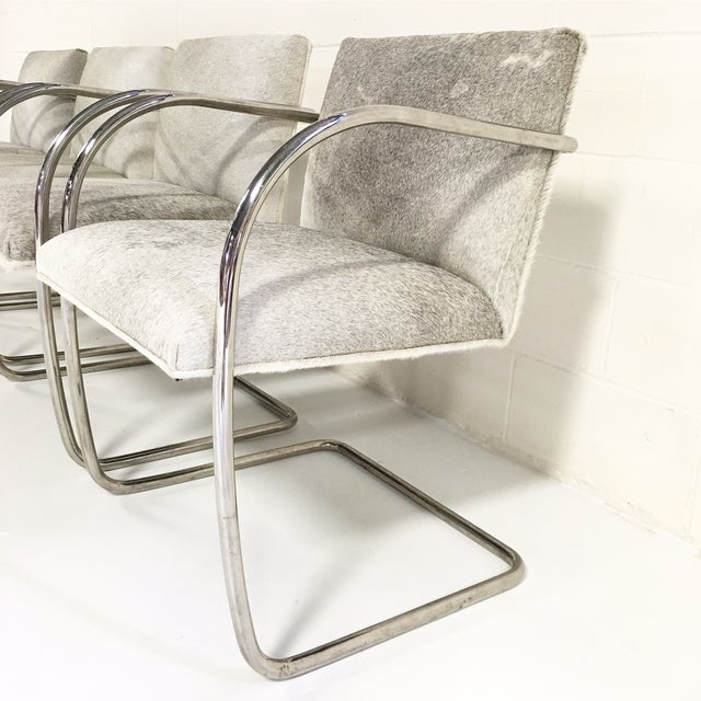 Brno Style Cowhide Chairs - Set of 4 - Image 4 of 7