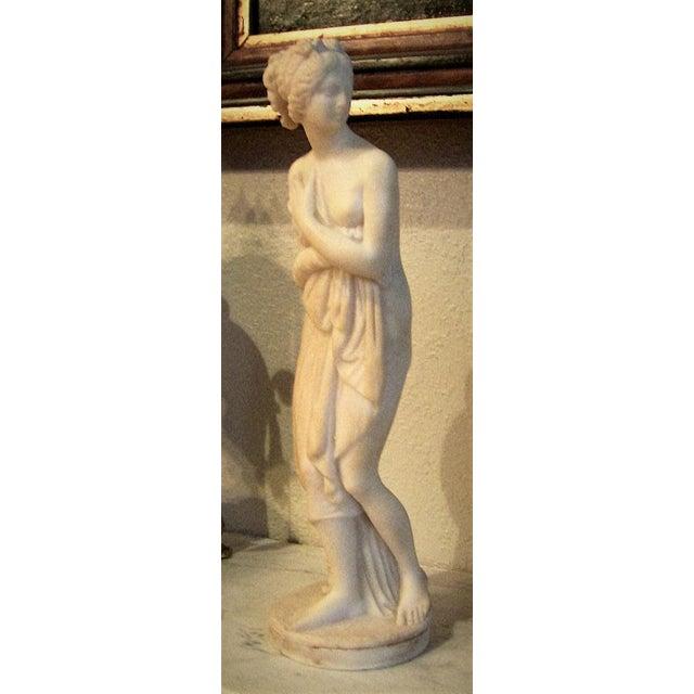 19c Italian Marble Figurine of Venus For Sale - Image 4 of 8