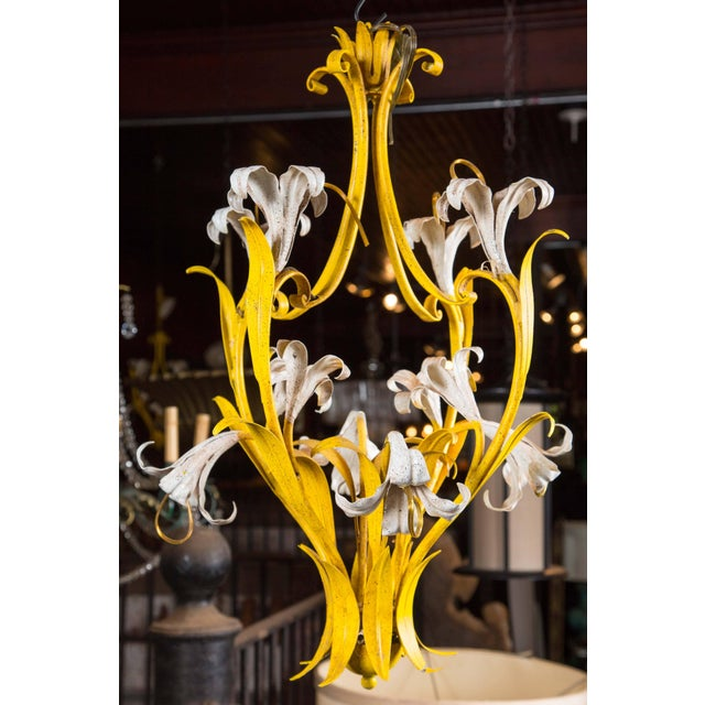 New stock of 1960s Italian yellow and white lily chandelier. Eight lilies are lights for candelabra size bulbs. Two...