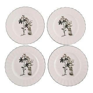 """1990's Mikasa """" Botanic"""" Porcelain Botany Salad Plate-Set of 4"""